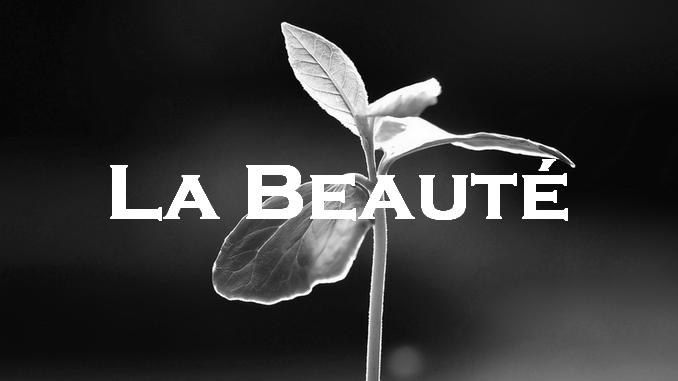 La Beauté