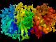 Image de synthèse du coronavirus